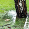 Why Is Yard Drainage So Important?